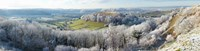 "Snow covered trees in a valley from Uley Bury, Downham Hill, Gloucestershire, England by Panoramic Images - 35"" x 9"""