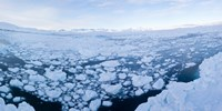 "Ice floating in fjord, Tiniteqilaaq, Greenland by Panoramic Images - 18"" x 9"""
