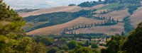 "High angle view of winding road in valley, Tuscany, Italy by Panoramic Images - 24"" x 9"""