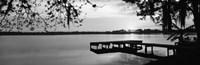Lake Whippoorwill, Sunrise, Florida (black & white) Fine Art Print