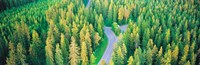 """Fall aerial road forest Kuopio Finland by Panoramic Images - 37"""" x 12"""" - $34.99"""