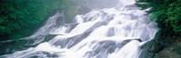 """Ryuto Falls Tochigi Nikko Japan by Panoramic Images - 37"""" x 12"""""""