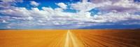 """Dirt road Amboseli Kenya by Panoramic Images - 36"""" x 12"""""""