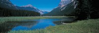 """Golden British Columbia Canada by Panoramic Images - 36"""" x 12"""""""