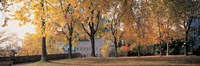 """Quebec City Quebec Canada by Panoramic Images - 36"""" x 12"""" - $34.99"""
