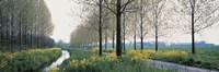 Dordrecht Holland Netherlands Fine Art Print