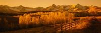 "Dallas Divide, San Juan Mountains, Colorado (sepia) by Panoramic Images - 36"" x 12"", FulcrumGallery.com brand"