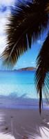 "Maho Bay, Virgin Islands National Park, St. John, US Virgin Islands by Panoramic Images - 12"" x 34"""