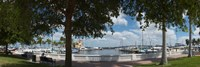 "Twin Dolphin Marina, Manatee River, Bradenton, Manatee County, Florida by Panoramic Images - 36"" x 12"" - $34.99"