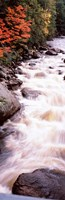 """River flowing through a forest, Ausable River, Adirondack Mountains, Wilmington, New York State (vertical) by Panoramic Images - 12"""" x 37"""""""