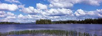 """Trees at the lakeside, Raquette Lake, Adirondack Mountains, New York State, USA by Panoramic Images - 33"""" x 12"""""""