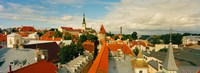 """Buildings in a town, Tallinn, Estonia by Panoramic Images - 33"""" x 12"""""""