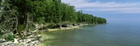"""Trees at the lakeside, Cave Point County Park, Lake Michigan, Wisconsin by Panoramic Images - 37"""" x 12"""""""