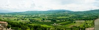 """High angle view of a field, Lacoste, Vaucluse, Provence-Alpes-Cote d'Azur, France by Panoramic Images - 40"""" x 12"""""""