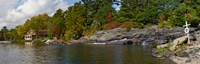 "Trees at the riverside, Moon River, Bala, Muskoka, Ontario, Canada by Panoramic Images - 38"" x 12"""