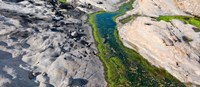 """Point Lobos State Reserve, Carmel, Monterey County, California by Panoramic Images - 28"""" x 12"""""""