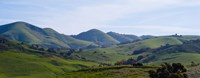 "High angle view of a valley, Edna Valley, San Luis Obispo County, California, USA by Panoramic Images - 31"" x 12"""