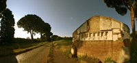 Tombs and umbrella pines along the Via Appia Antica, Rome, Lazio, Italy Fine Art Print