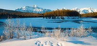 Frozen river with mountain range in the background, Mt Fryatt, Athabaska River, Jasper National Park, Alberta, Canada Fine Art Print