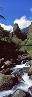 """Stream flowing through a valley, Iao Needle, Iao Valley, Wailuku, Maui, Hawaii, USA by Panoramic Images - 12"""" x 36"""""""