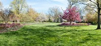 """Trees in a Garden, Sherwood Gardens, Baltimore, Maryland by Panoramic Images - 26"""" x 12"""""""