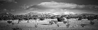 High desert plains landscape with snowcapped Sangre de Cristo Mountains in the background, New Mexico (black and white) Fine Art Print