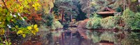 "Japanese Garden in autumn, Tatton Park, Cheshire, England by Panoramic Images - 37"" x 12"""