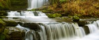 """Waterfalls in a forest, Scaleber Force, Yorkshire Dales, North Yorkshire, England by Panoramic Images - 30"""" x 12"""""""