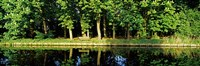 """Canal near Lisse, Netherlands by Panoramic Images - 36"""" x 12"""""""