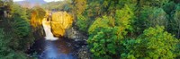 """Waterfall in a forest, High Force, River Tees, Teesdale, County Durham, England by Panoramic Images - 36"""" x 12"""""""