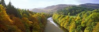 """River Garry at Killiecrankie, Pitlochry, Perth And Kinross, Scotland by Panoramic Images - 36"""" x 12"""", FulcrumGallery.com brand"""