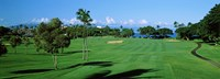 Trees , Kaanapali Golf Course, Maui, Hawaii, USA Fine Art Print