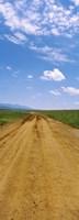 "Dirt road passing through San Rafael Valley, Arizona by Panoramic Images - 12"" x 33"", FulcrumGallery.com brand"
