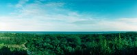 """High angle view of trees with Atlantic Ocean at Fort Tilden beach, Queens, New York City, New York State, USA by Panoramic Images - 30"""" x 12"""""""