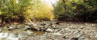 """Creek running through the Catskills, Kaaterskill Falls, New York State, USA by Panoramic Images - 29"""" x 12"""""""