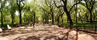 "Central Park, New York City, New York State by Panoramic Images - 29"" x 12"""