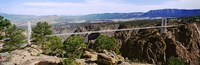 "Suspension Bridge Across Royal Gorge by Panoramic Images - 37"" x 12"""