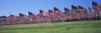 "American flags in memory of 9/11, Pepperdine University, Malibu, California by Panoramic Images - 36"" x 12"""