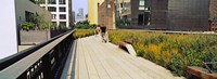 """Walkway in a linear park, High Line, New York City, New York State, USA by Panoramic Images - 33"""" x 12"""""""