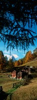 """Huts with the Mt Matterhorn in background in autumn morning light, Valais Canton, Switzerland by Panoramic Images - 12"""" x 32"""", FulcrumGallery.com brand"""