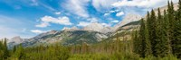 Trees with Canadian Rockies in the background, Smith-Dorrien Spray Lakes Trail, Kananaskis Country, Alberta, Canada Fine Art Print