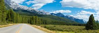Road passing through a forest, Bow Valley Parkway, Banff National Park, Alberta, Canada Fine Art Print