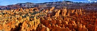 Hoodoo rock formations in Bryce Canyon National Park, Utah, USA Framed Print