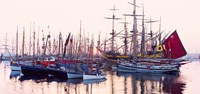 Tall ship in Douarnenez harbor, Finistere, Brittany, France Fine Art Print