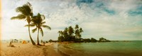 """Two Big Palm Trees in Morro De Sao Paulo, Brazil by Panoramic Images - 30"""" x 12"""""""