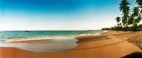 "Palm trees on the beach, Morro De Sao Paulo, Tinhare, Cairu, Bahia, Brazil by Panoramic Images - 29"" x 12"""