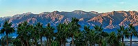 Palm trees with mountain range in the background, Furnace Creek Inn, Death Valley, Death Valley National Park, California, USA by Panoramic Images - various sizes