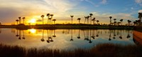Reflection of trees in water at sunset, Lake Worth, Palm Beach County, Florida, USA Fine Art Print