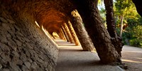 """Corridor in a park, Park Guell, Barcelona, Catalonia, Spain by Panoramic Images - 24"""" x 12"""""""