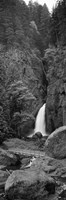 Waterfall in black and white, Columbia River Gorge, Oregon, USA by Panoramic Images - various sizes